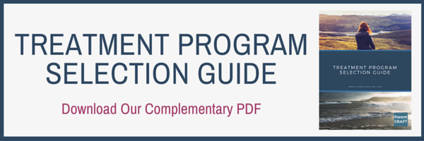 Treatment-Program-Selection-Guide-Banner